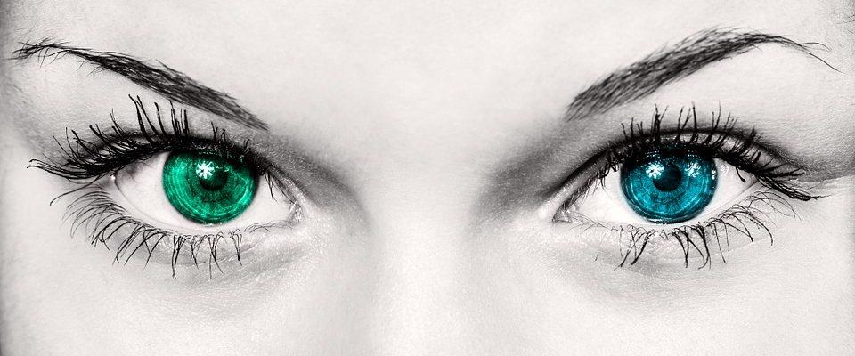 eyes-586849_960_720.jpg